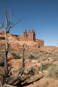 Free Arches National Park Royalty Free Stock Photo - 17739705