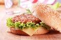 Free Cheeseburger Royalty Free Stock Photos - 17746518