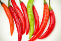 Free Red And Green Spicy Chili Peppers Stock Photo - 17749060