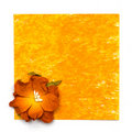 Free Yellow Painting Paper With Flower Stock Photography - 17749542