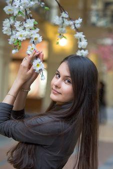 Free Beautiful Asian Girl Royalty Free Stock Image - 17741596