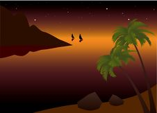 Tropical Palm Beach Near The Ocean At Sunset Stock Photo