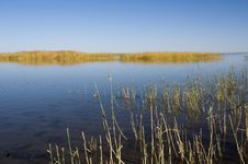 Free Quiet Autumn Lake Stock Images - 17742694