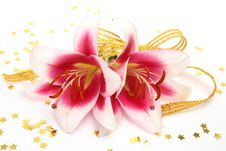 Free Pink Lilies Stock Images - 17742744