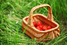 Free Sweet Strawberry Stock Images - 17743174