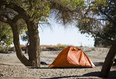Free Campsite With Tent Stock Photography - 17744912