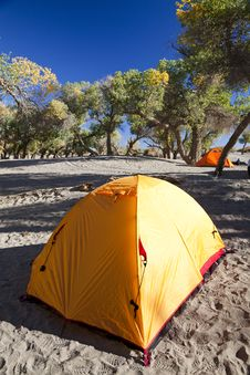 Free Campsite With Tent Royalty Free Stock Images - 17745099