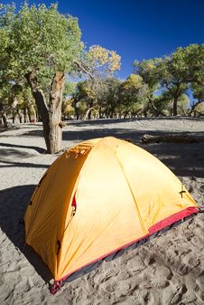 Free Campsite With Tent Stock Image - 17745341