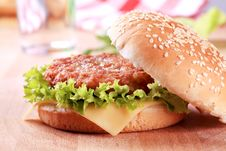 Free Cheeseburger Royalty Free Stock Photos - 17746518