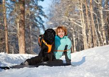 Woman With Dog In Winter Wood Stock Image