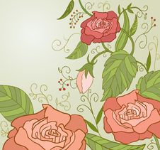 Free Sweet Pink Roses Inretro Style With Green Leaf Stock Image - 17747851