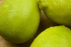Free Lime Fruits Royalty Free Stock Images - 17749359