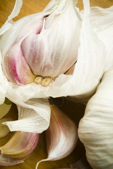 Free Organic Garlic Cloves Royalty Free Stock Image - 17749806