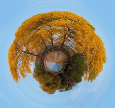 Free Autumn Stock Images - 17750194