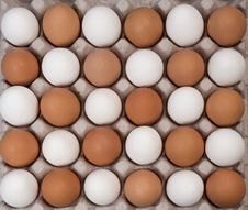 Free Alernative White And Brown Eggs Stock Photography - 17753012