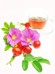 Fruit Red Tea With Wild Rose Hip Stock Photography
