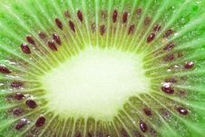 Free Kiwi Royalty Free Stock Image - 17753736