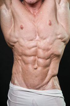Free Bodybuilder Stock Photography - 17755732