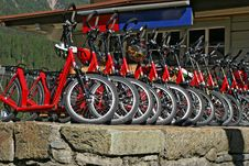 Free Red Downhill Bicycles For Rent Stock Image - 17756351