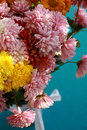 Free Chrysanthemums Flower Stock Photo - 17762180