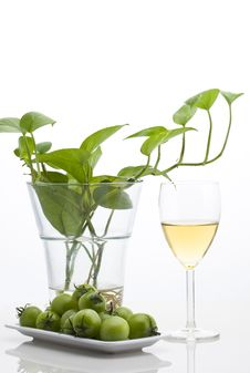 Free White Wine Stock Images - 17761004
