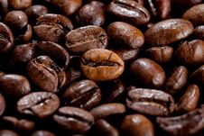 Free Coffee Beans Royalty Free Stock Images - 17761059