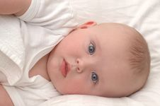 Free Portrait Of A Six Month Old Baby Stock Photo - 17761590