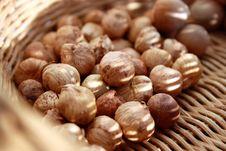 Free Hazelnuts Royalty Free Stock Photos - 17762148