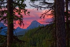Free Red Sky Sunset Thru The Forest Royalty Free Stock Photography - 17762427
