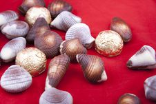 Free Chocolate Sweets In Shape Of Shells Royalty Free Stock Images - 17763059