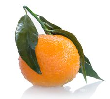 Ripe Tangerine With Leaves And Drops Of Water Stock Photography