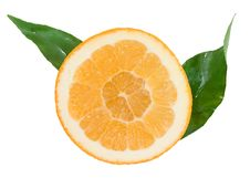 Free Orange Segment With Green Leaves Royalty Free Stock Image - 17764906