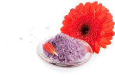 Sea Salt With Gerbera Flowers Stock Image