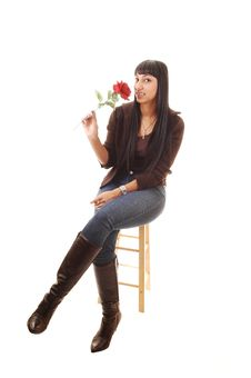 Girl With Rose. Royalty Free Stock Images