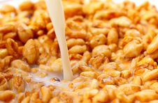 Free Granola With Milk Royalty Free Stock Image - 17766546