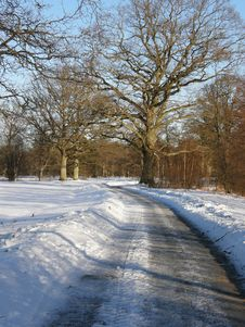 Free Road Through The Snow Royalty Free Stock Photos - 17770798