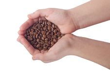 Free Coffee Royalty Free Stock Photography - 17772177