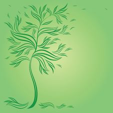 Free Design With Decorative Tree From Leafs Royalty Free Stock Photos - 17772508