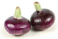 Free Red Onion Stock Photos - 17773823