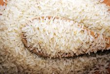 Free Rice Cereals Royalty Free Stock Photography - 17778207