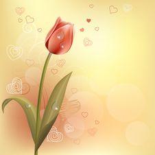 Free Pastel Background With Tulip Stock Photo - 17780240