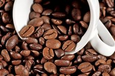 Free Cup Of Coffee On Beans Stock Image - 17780241