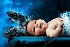 Free Rabbit Costume Stock Photo - 17781170