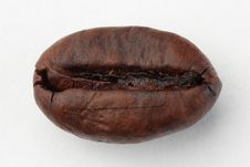 Free Coffee Bean Stock Image - 17781551