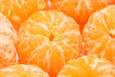 Free Tangerines Royalty Free Stock Photography - 17781977