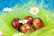 Free Easter Eggs Royalty Free Stock Photography - 17782527