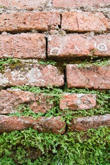 Free Old Brick Wall Royalty Free Stock Images - 17782759