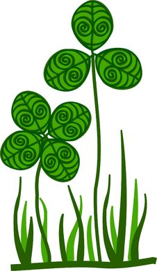Ornamental Clover Stock Images