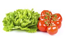 Free Tomatoes And Lettuce Royalty Free Stock Photography - 17785577