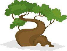 Free Tree Stock Image - 17786941